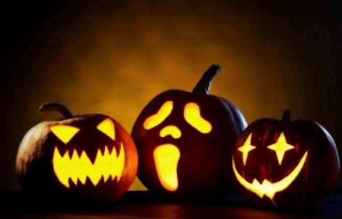 pumpkin's family